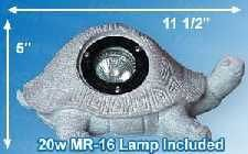 Desert Collection Turtle Spot Light