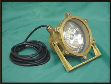 LV 308 Low Voltage Underwater Light