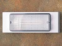 W 9300 Die Cast Aluminum Wall Fixture
