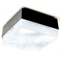 DF 6635 Outdoor Light