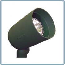 DPR 20 120V Cast Aluminum Spot Light