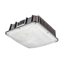 DW 6680 Outdoor Powder Coated Cast Aluminum  LED Light