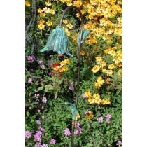 Spanish Bluebell Bronze Flower and Leaves Garden Light