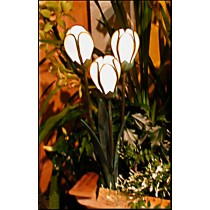 Tulip Cluster Garden Light